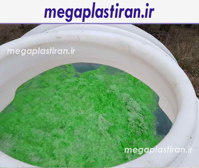 جلبک زدن مخزن آب
